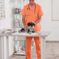 Practicas-Curso-Auxiliar-Veterinaria-25