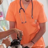 Practicas-Curso-Auxiliar-Veterinaria-43