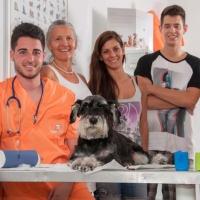 Practicas-Curso-Auxiliar-Veterinaria-48