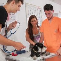 Practicas-Curso-Auxiliar-Veterinaria-61