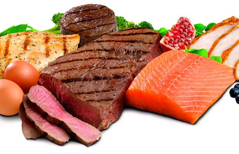 Alto, valor y biológico, ¿serán las proteínas? - TOP aul@ Salud