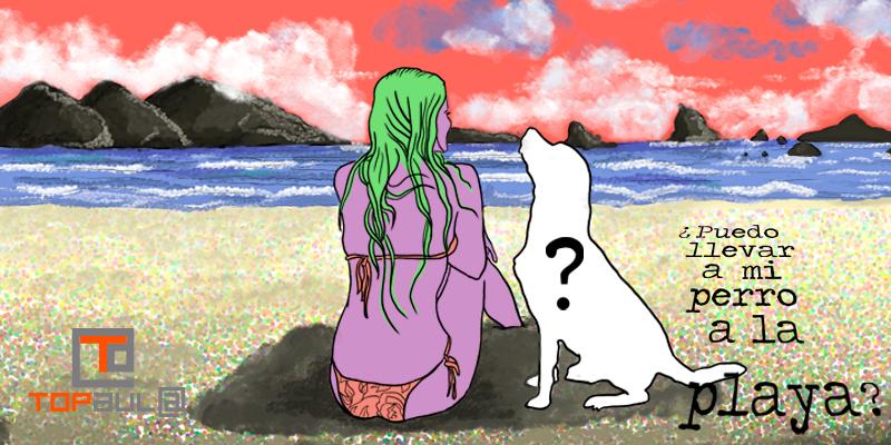¿Puedo llevar a mi perro a la playa? - www.topaulasalud.com