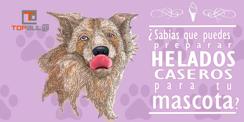 ¿Sabías que puedes preparar helados caseros para tu mascota? - www.topaulasalud.com