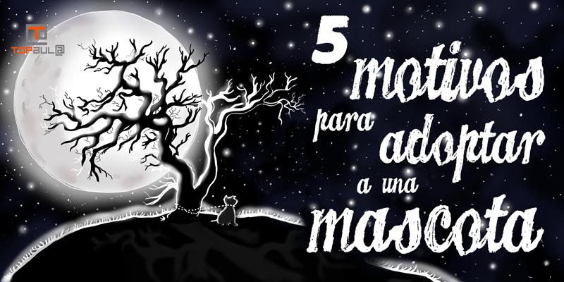 5 motivos para adoptar a una mascota - www.topaulasalud.com