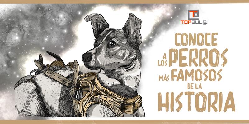 Conoces a los 5 perros más famosos de la historia - www.topaula.com